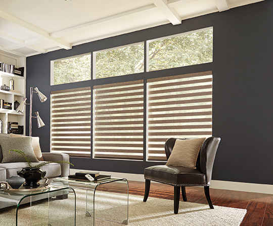 Transitional Shades By Cynergy Blinds
